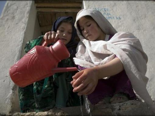 agua-afegan