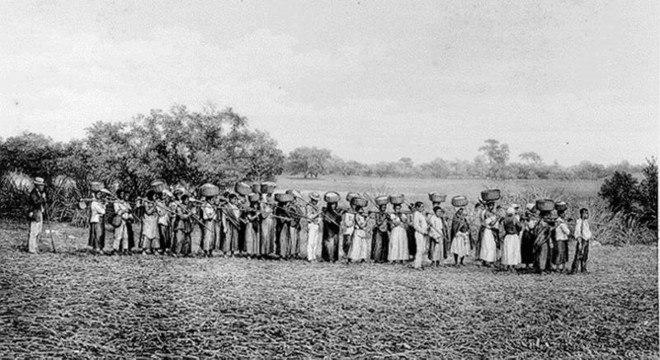 A luta esquecida dos negros pelo fim da escravidão noBrasil